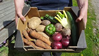 A man holding a medium box of veg