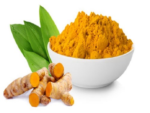 Effects of ingested turmeric oleoresin on glucose and lipid metabolisms in obese diabetic mice
