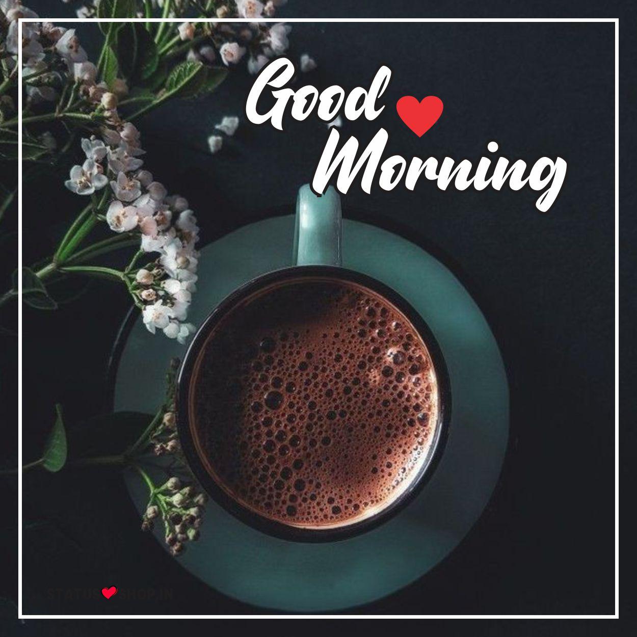 Beautiful-Morning-Images
