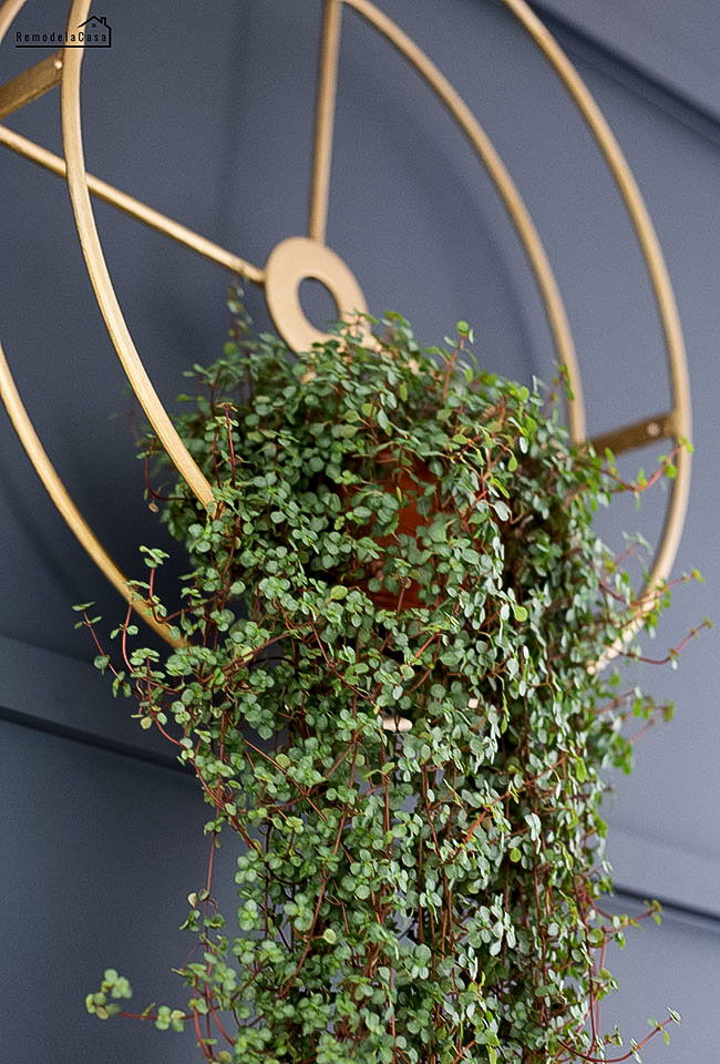 upcycled hanging planter