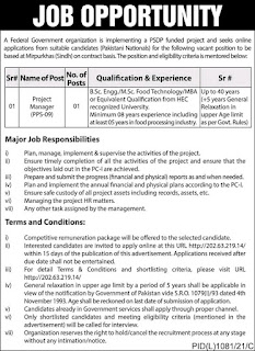 Jobs In Ferderal Government Orgnization  - Project Manager Required