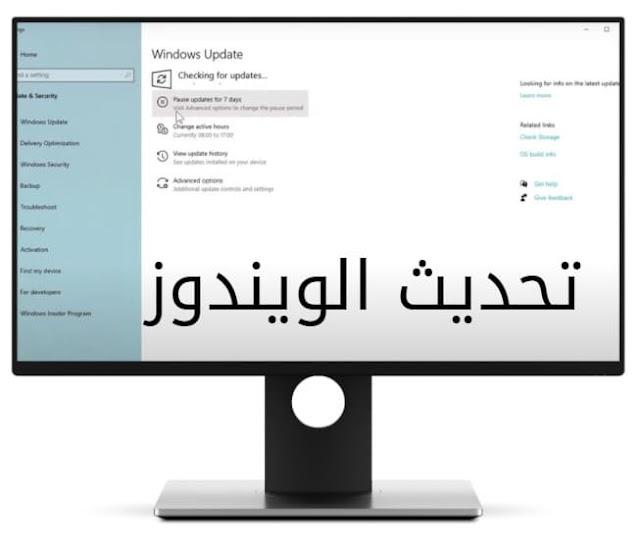 windows 11 - microsoft download