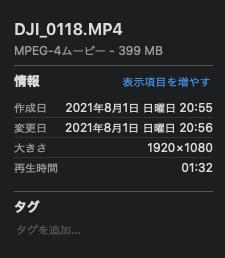 動画のファイル情報