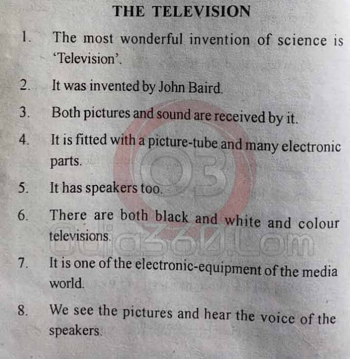 The Television - 10 Lines Essay in English Language for Juniors