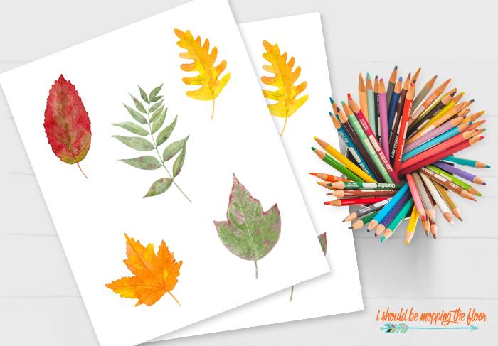 Classroom Leaf Templates