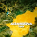Suspected kidnappers abduct nursing mother in Adamawa