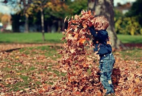 Eco-Friendly Activities For Children