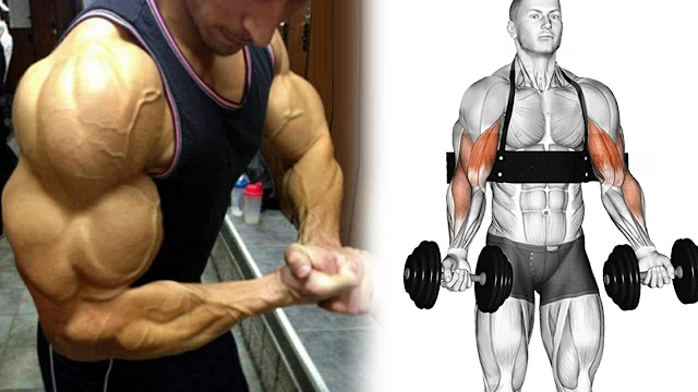 6 Exercises At Home To Get Bigger Arms
