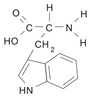 O triptofano é um aminoácido essencial. Ele é um precursor da molécula da serotonina, um neurotransmissor relacionado ao humor e bem-estar, popularmente conhecido como hormônio da felicidade.
