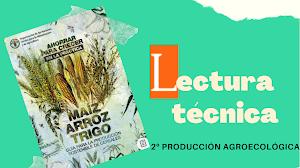 Lectura técnica: Sostenibilidad productiva de los cereales en la alimentación animal
