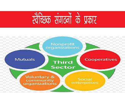 स्वैच्छिक संगठनों के प्रकार |Types of Voluntary Organisations in Hindi