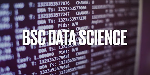 BSc data science course