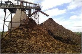 Perhitungan Biomassa dan Potensi Karbon