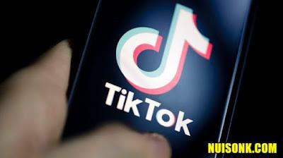 Cara Download Video Tiktok Tanpa Watermark Apk 2021