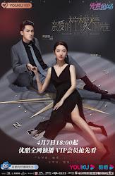 Plot Love (2021)