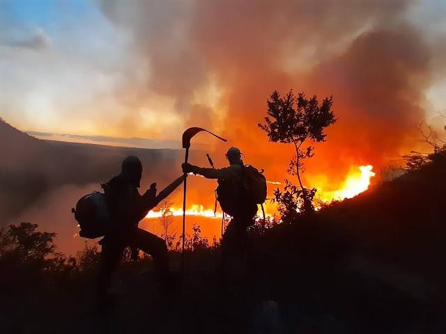 Focos de incêndio são registrados em área de vegetação na Chapada Diamantina (Foto: Divulgação / IPAH)