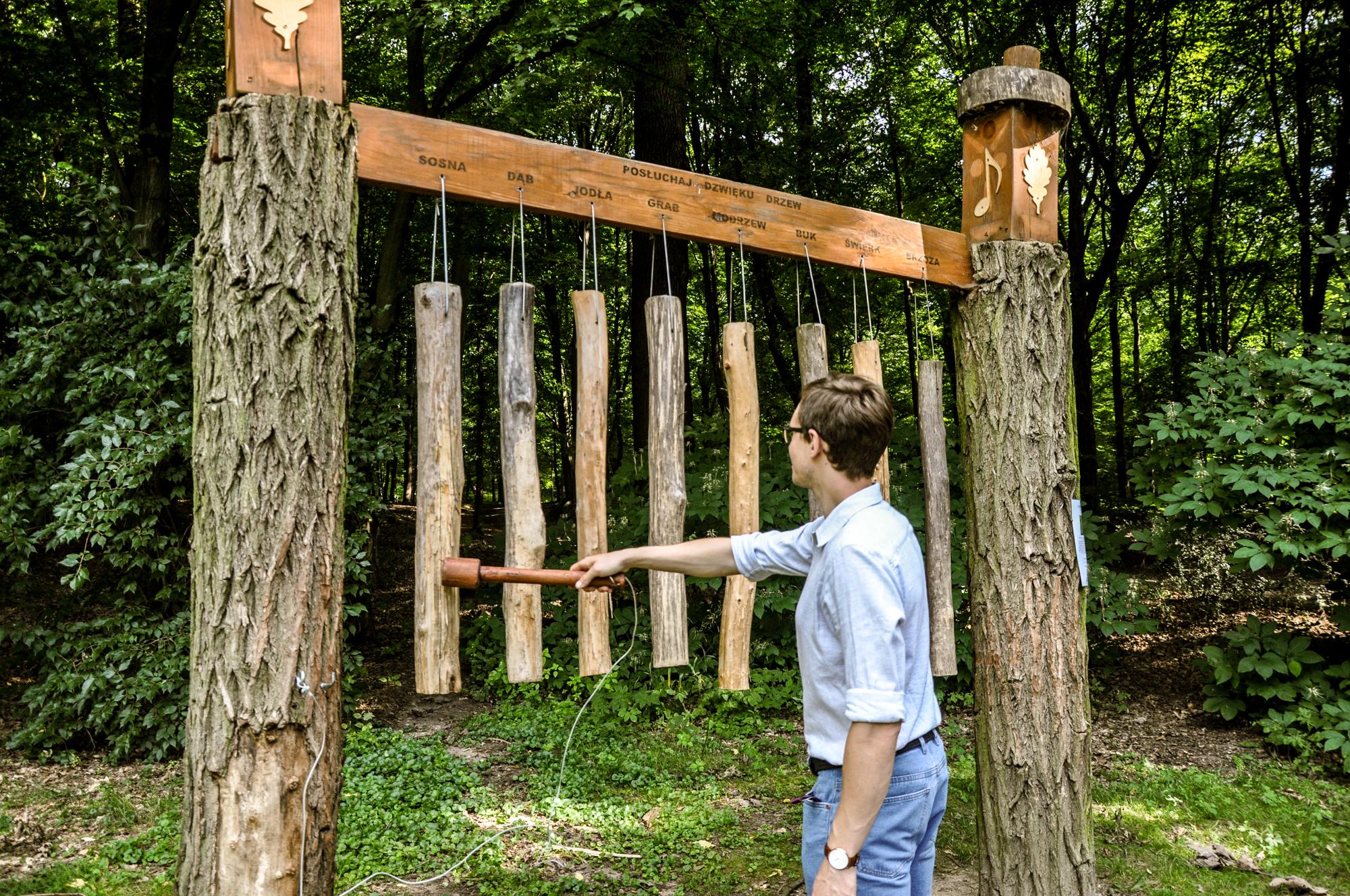 Terapia dźwiękiem Arboretum Bramy Morawskiej Racibórz