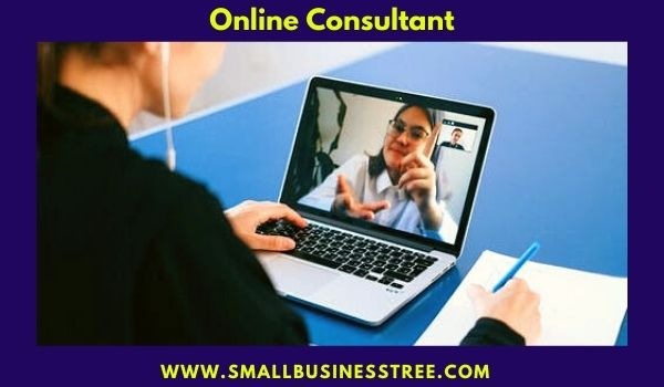 Online Consultant Business in USA