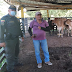 Cuadrante rural de Suan logran recuperar tres reses hurtadas