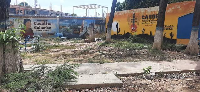 LA DESIDIA ARROPA LAS PLAZAS CAROREÑAS (+FOTOS)