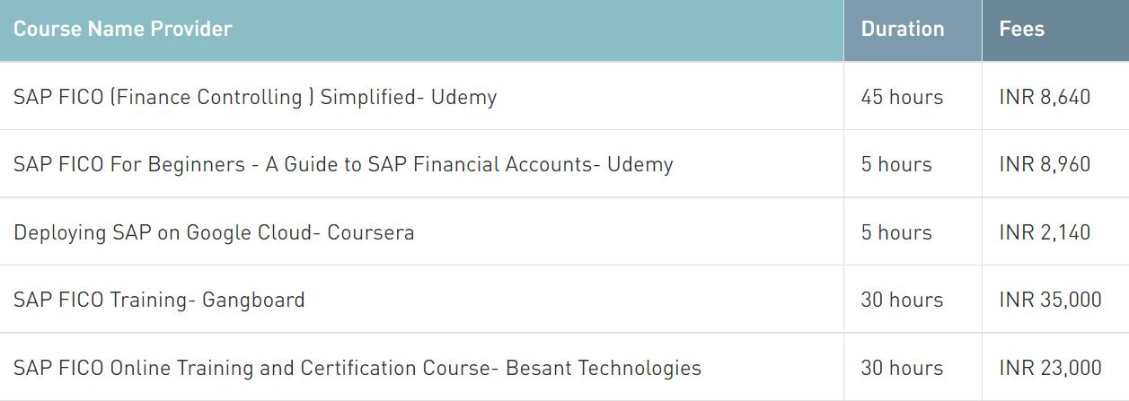 sap course details in Hindi | sap fico course details