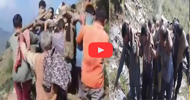 हिमाचल वीडियो: कंधों पर घायल गाय और होंठों पर पहाड़ी गीत, कुछ ऐसे पेश की मानवता की मिसाल