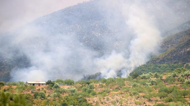 Πυρκαγιά σε δασική έκταση στον Δήμο Μύκης στην Ξάνθη
