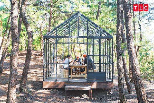 大夥兒在松林間的透明玻璃餐廳裡一起吃飯,場景夢幻極了
