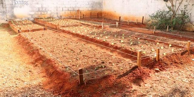 Secretaria de Agricultura desenvolve projeto de horta terapêutica para instituições