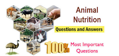Animal Nutrition Question and Answers