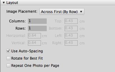 4th image of Adobe Bridge dashboard