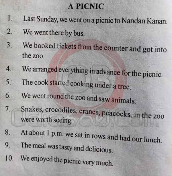 A Picnic - 10 Lines Essay in English Language for Juniors