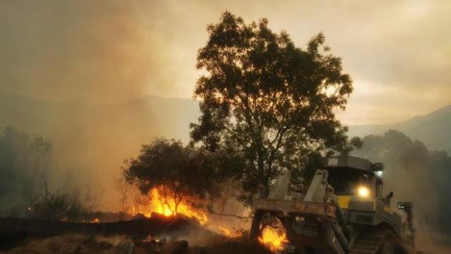 Incendio de navalacruz.
