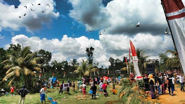 Festival Dara Ngindang, ribuan merpati hiasi langit Desa Lendang Belo
