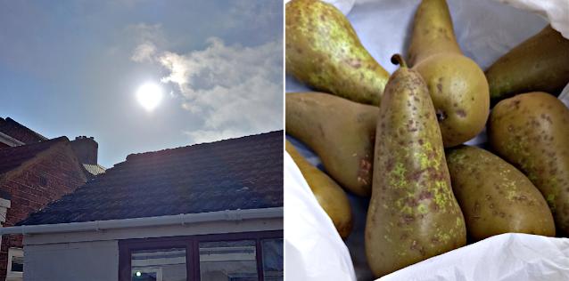 The sun in the sky & pears