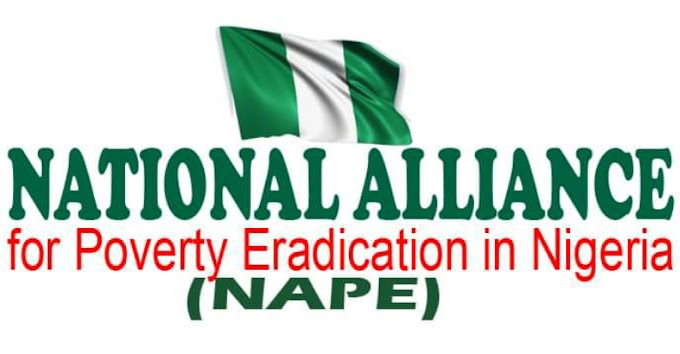 Is NAPE Soft Loan Fake or Real | Learn more about National Alliance for Poverty Eradication in Nigeria