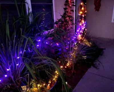 halloween lights in a courtyard