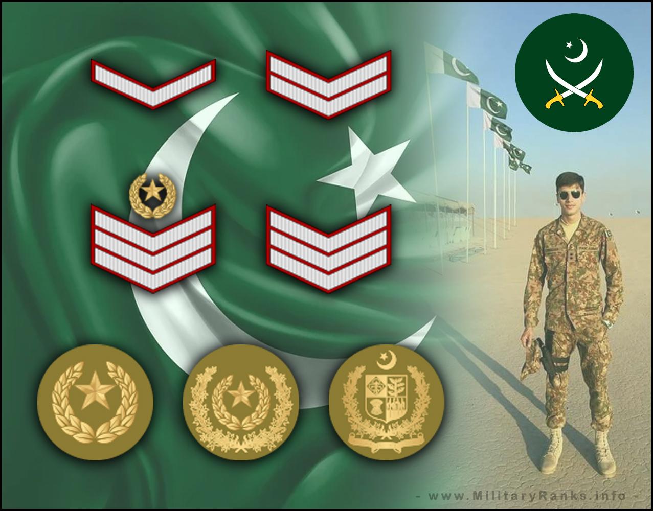 Pakistan Army Ranks and Insignia | Pakistan Army Ranks Insignia Badges