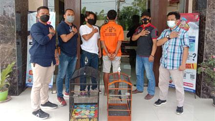 Warga Pringsewu Lampung Ditangkap Polisi