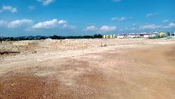 Presiden RI Lestarikan Mangrove di Batam, Oknum Pengusaha Property Diduga Rusak Hutan Mangrove.
