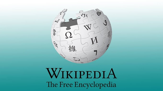 Why Wikipedia ranks better in Google Search Engine
