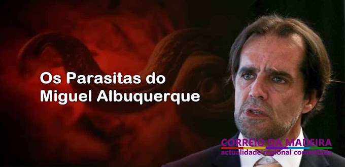 Os parasitas do Miguel Albuquerque