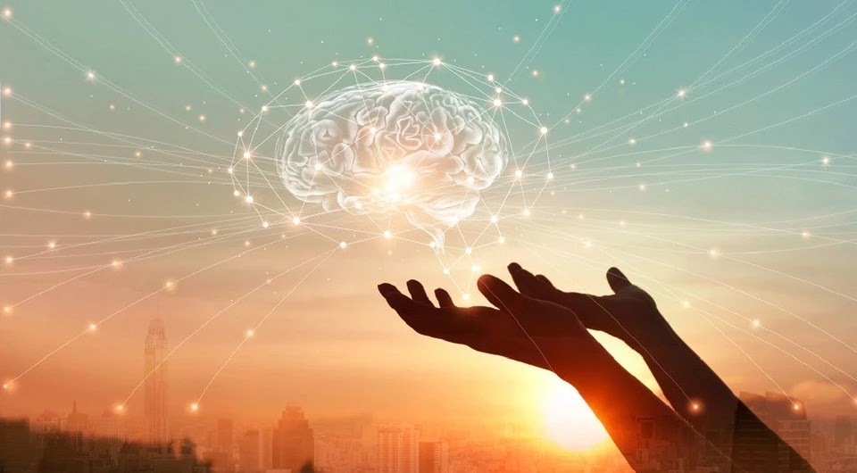 Protecting Memory: Good Habits to Fight Brain Aging