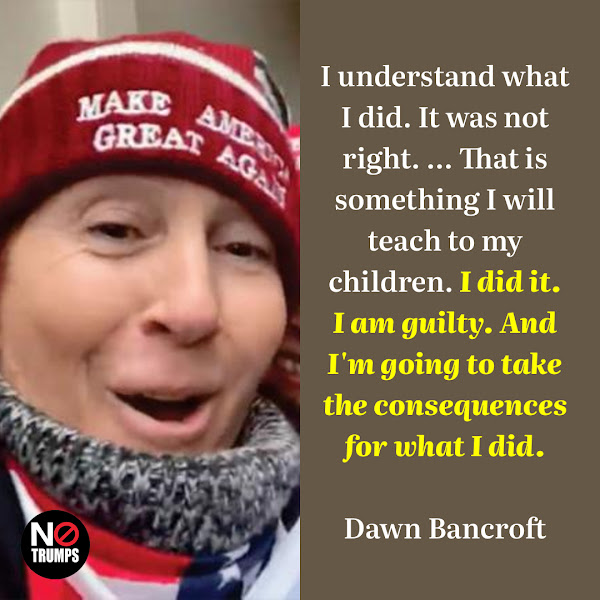 I understand what I did. It was not right. ... That is something I will teach to my children. I did it. I am guilty. And I'm going to take the consequences for what I did. — Doylestown gym owner Dawn Bancroft