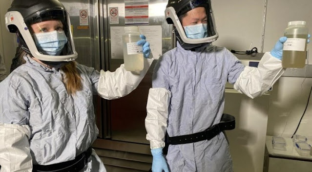 Sebuah Proposal Bocor Ungkap Ilmuwan AS dan China Berencana Membuat Virus Corona Baru Sebelum Pandemi