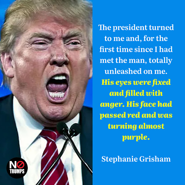 The president turned to me and, for the first time since I had met the man, totally unleashed on me. His eyes were fixed and filled with anger. His face had passed red and was turning almost purple. — Former White House press secretary Stephanie Grisham