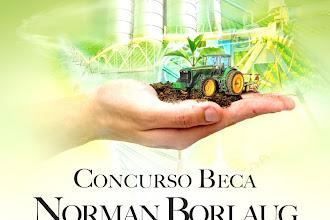 """Concurso BECA """"Norman Borlaug"""" de Ingeniería en Agronomía"""
