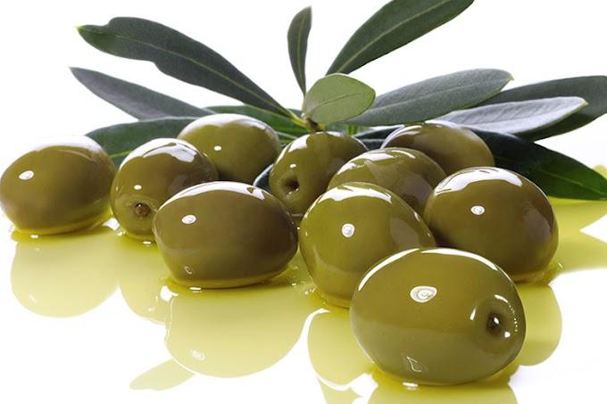 Maltempo: sos raccolta olive, sale conto dei danni