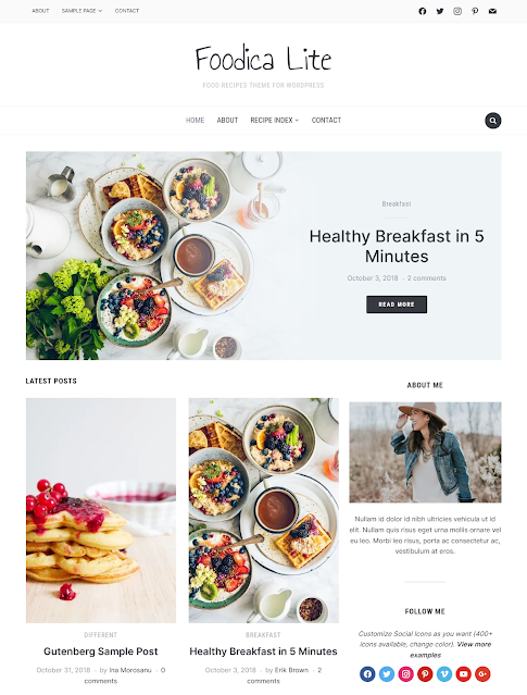 Foodica lite Best Free WordPress Themes For Blogs 2021