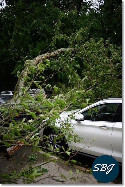 mobil terkena bencana alam